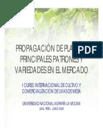 PROPA