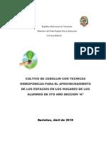 Proyecto organoponico