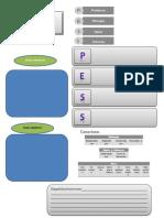 formato PESS (2) (1)