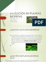 Evolución en Plantas Biofritas