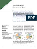 Formación Vaca Muerta - La conquista de un gigante.pdf