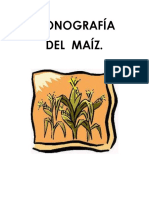 239223933-Monografia-Del-Maiz.docx
