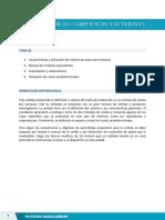 Competencias y Actividades - Unidad 4 (3)
