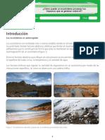 Ecosistemas e Impactos