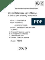 Monografia de La Guanabana (3)