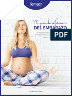 Pregnancy Guide ES-min