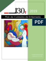 UA_Guía Proceso de Enfermería Etapa Planificación-
