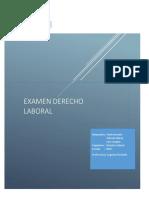 Examen Derecho Laboral Final(Integrantes) Luis Vasquez, Paula Aravena y Patricio Salazar)