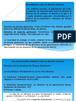 IV parte Derecho Ambiental.pdf