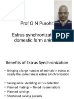 Lecture 6 Esstrus Synchronization
