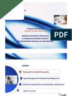 1. ABC Training Consulting_Analiza Economico Financiara(Dec 2010)