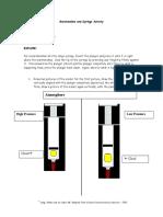 Marshmallow and Syringe Activity Answer Key