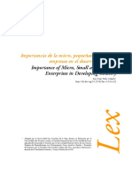 Dialnet-ImportanciaDeLaMicroPequenasYMedianasEmpresasEnElD-5157875.pdf