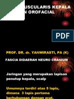 4.15 sistem musculoskeletal kepala & orofacial.ppt