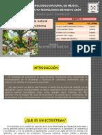 desarrollo sustentable unidad 1..pptx