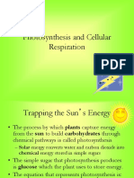 Photsynthesis and Cellular Respiration (1)