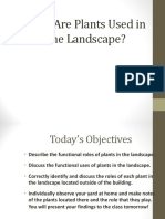 Why Are Plants Used in the Landscape