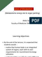 Bms2 Integration of Metabolism
