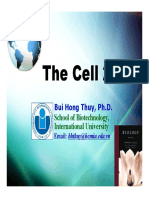 Lecture 4. the Cell 2