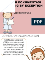 Contoh Dokumentasi Charting by Exception