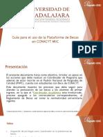 guia_coordinador_nacional_miicv2.pdf