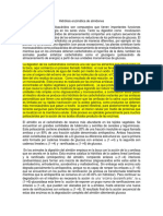 Hidrolisis Enzimatica Del Almidon