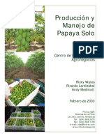 CDA Fintrac Manual Produccion Papaya 10 02 Esp