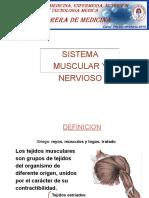 SISTEMA MUSCULAR Y NERVIOSO.pdf