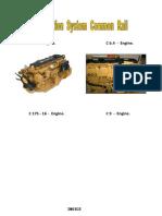 Treinamento C6.6 Common Rail