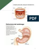 APARATO   DIGESTIVO 141117.doc