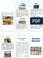 Folleto desastres-naturales.pdf