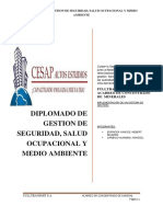 Third Avance Diplomado SSOMA 19-01-2018