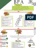 BPA (1).pdf