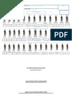 01. FORMATO ORGANIZACION PELOTON   REENTRENADO 1-1.docx
