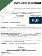 Constitucion de una sociedad anonima comun.pdf