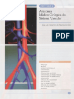 03- Anatomia Médico-Cirúrgica do Sistema Vascular
