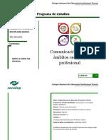 4. Comunicacion en Los Ámbitos Escolar y Profesional_P