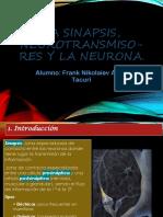 Trabajo de Neuro