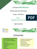Aporteindividual Adrianapena 150416002624 Conversion Gate02