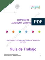 Guía_Final_19062017