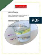 La Vela Ecologica Informe