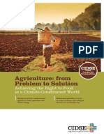 Agriculture From Problem to Solution CIDSE Dec2012