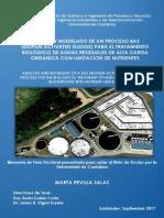 Tesis MRS.pdf