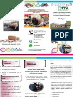 Brochure Promocionar Programa de Inseminación Artificial en Porcina