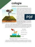 Ecologia e Ecossistema
