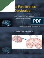 Áreas Funcionales Cerebrales.pptx
