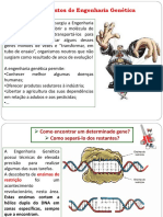 engenharia_genetica