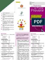 253881125-Triptico-DM-Con-Test-Findrisk-1.pdf