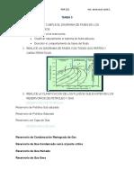 TAREA 3- pgp-221.doc