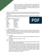 CULTIVO DE LA COCONA.docx